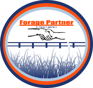 forage-partner-logo